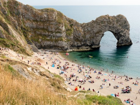 Dorset and Devon most popular counties in England, while Bedfordshire ranked bottom