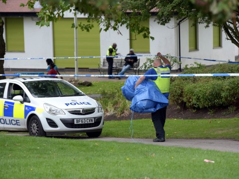 Two children stabbed and two others arrested for attempted murder