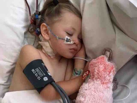 Girl, 3, fighting for life after catching deadly strain of E. Coli on holiday