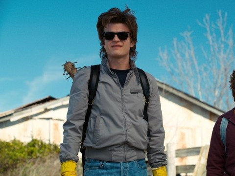 Stranger Things fans are convinced Steve will be killed off in season 4