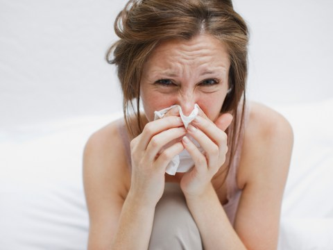 What to eat when you have a cold, and what you should avoid