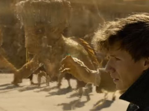 Fantastic Beasts: The Crimes of Grindelwald trailer appears to have a Groot cameo