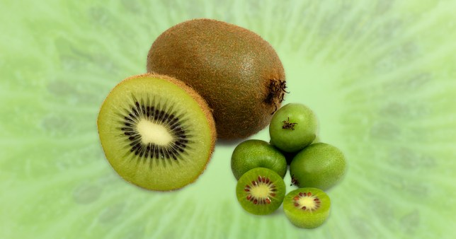 Picture: Getty, Morrisons Morrisons launches kiwi berries