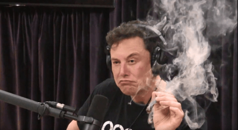 Because Elon smoked weed, Nasa has demanded a SpaceX safety review