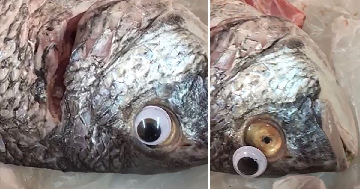 Shop caught sticking googly eyes on fish to make them look fresh