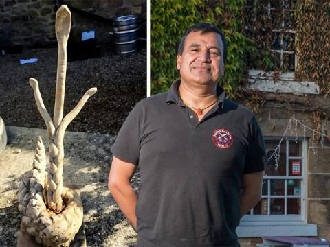 Restaurant owner blames bad TripAdvisor reviews on curse of three-headed snake