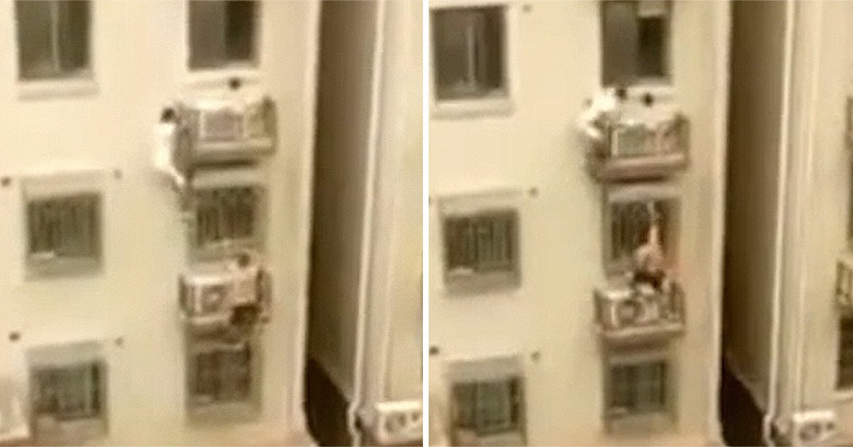 Men climb four storey building to save girl, 3, dangling from ledge 30ft up