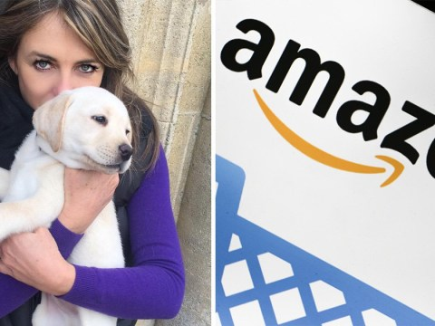 Amazon to pay Liz Hurley £2000 in vet bills after admitting driver ran over beloved dog