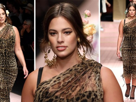 Ashley Graham slinks along the catwalk at Milan Fashion Week in leopard print