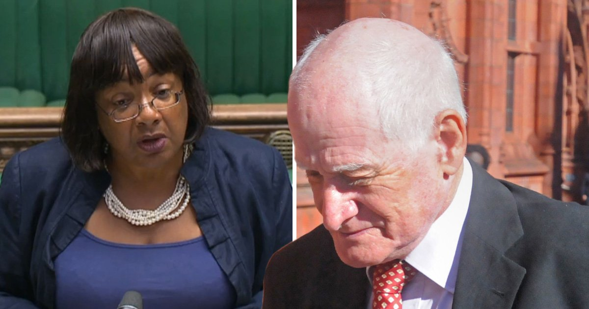 Councillor admits calling Diane Abbott 'a monkey' on Facebook