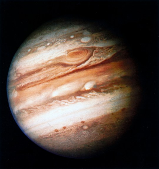 UNITED STATES - MAY 14: Full view of Jupiter photographed by Voyager 1 from 32 million kilometres away. NASA??s two Voyager spacecraft were launched in 1977 to explore the planets in the outer solar system. Voyager 1 reached Jupiter in 1979 before flying on to reach Saturn in 1980. The final phase of its mission is to cruise out of the solar system into interstellar space, continuing to return information until it loses contact with Earth. The largest planet in the solar system, Jupiter is a type of planet known as a gas giant, with an atmosphere composed mainly of hydrogen and helium. The atmosphere contains a number of large storms, the most famous of which, the Great Red Spot, is larger than the Earth and has been in existence for at least 300 years. (Photo by SSPL/Getty Images)