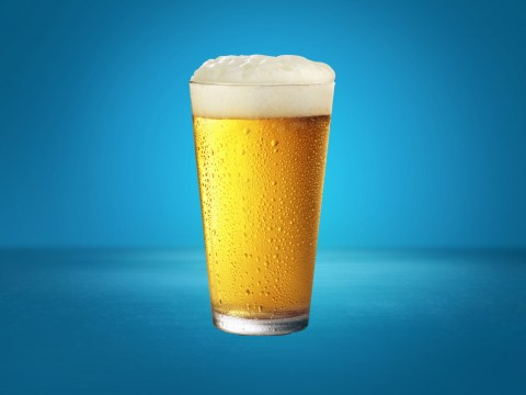 British beer lovers reveal what the perfect pint should look like