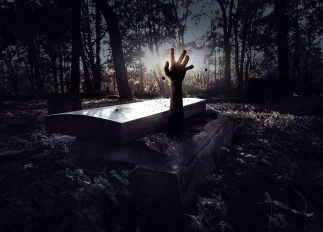 Hand rising out from the grave; Shutterstock ID 212582068; Purchase Order: -