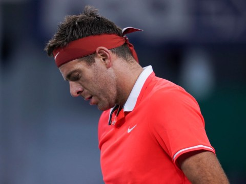 Juan Martin del Potro dealt another cruel injury blow