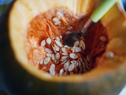 What to do with pumpkin seeds after your Halloween carving