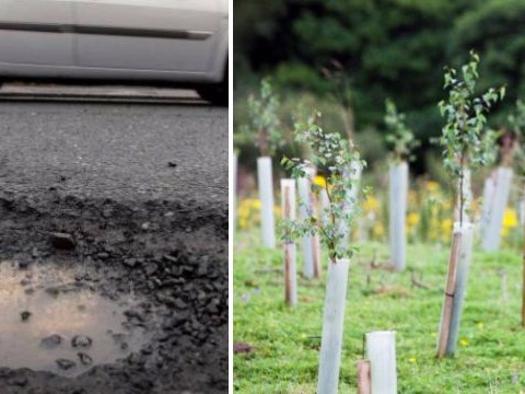 Seven times more money will be spent on potholes than planting trees after Budget 2018