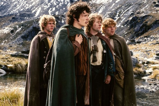 FILM 'THE LORD OF THE RINGS THE FELLOWSHIP OF THE RING' (2001)