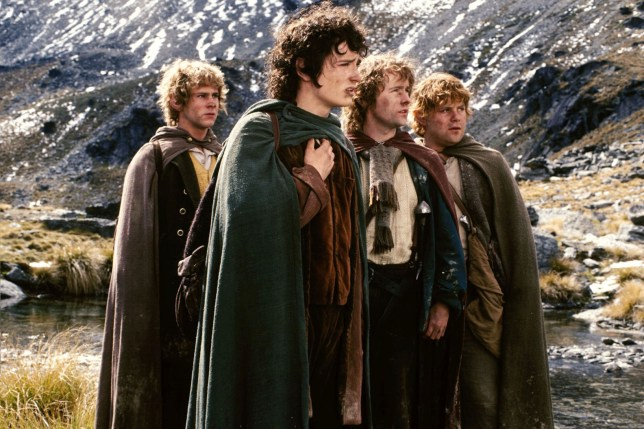 Image result for lord of the rings fellowship