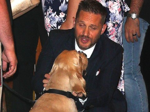 Tom Hardy is all of us as he meets legend dog at Venom premiere