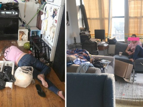 Cleaner helped herself to homeowner's vodka then passed out on the floor
