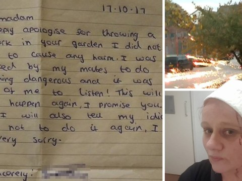 Boy writes to apologise for setting off fireworks that hit disabled neighbour