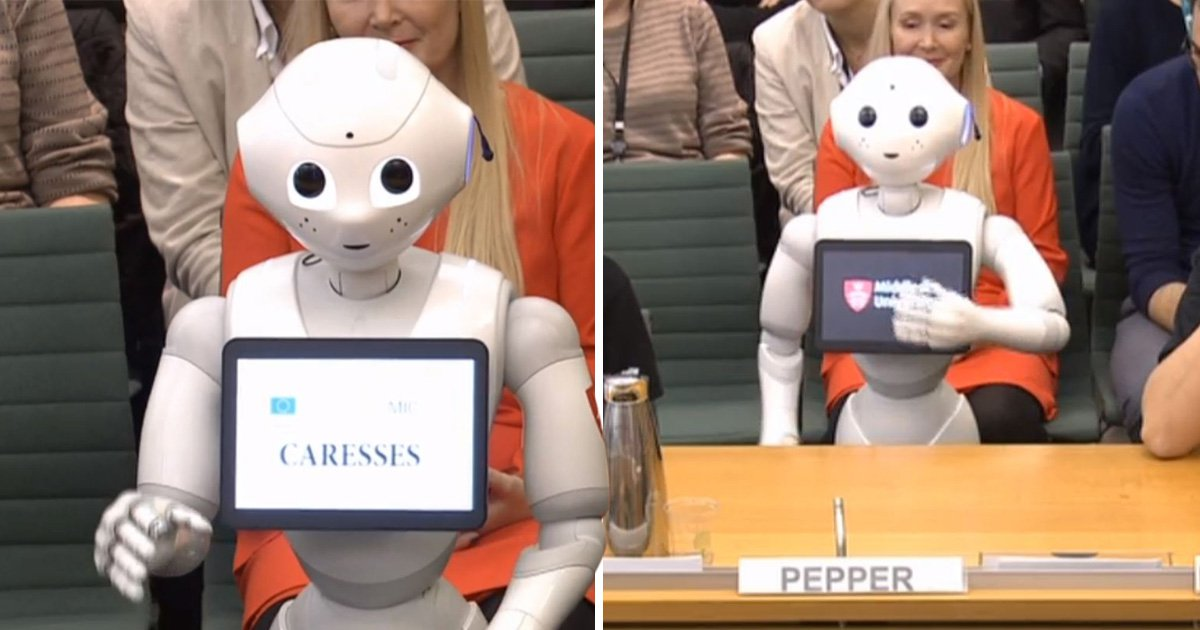 A robot just appeared as the first non-human witness in Parliament