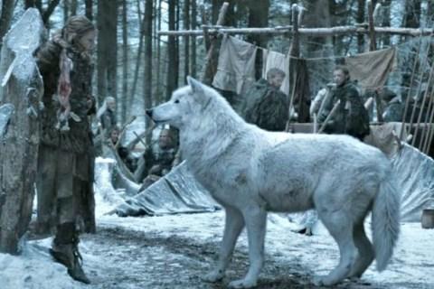 Game of Thrones: Jon Snow's direwolf held the secret to his