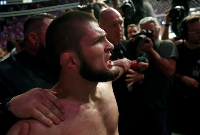 Khabib Nurmagomedov is held back outside of the cage after beating Conor McGregor in a lightweight title mixed martial arts bout at UFC 229 in Las Vegas, Saturday, Oct. 6, 2018. Nurmagomedov won the fight by submission during the fourth round to retain the title. (AP Photo/John Locher)