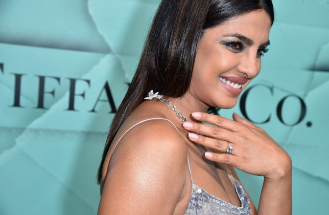Mandatory Credit: Photo by Stephen Lovekin/REX (9919508cb) Priyanka Chopra Tiffany Blue Book Collection: The Four Seasons of Tiffany jewelry collection launch, Arrivals, New York, USA - 09 Oct 2018