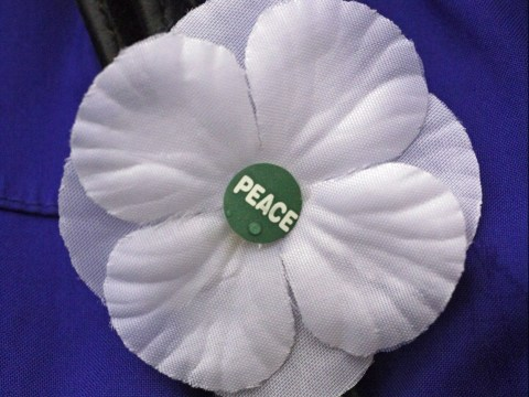 When were white poppies invented and by whom?