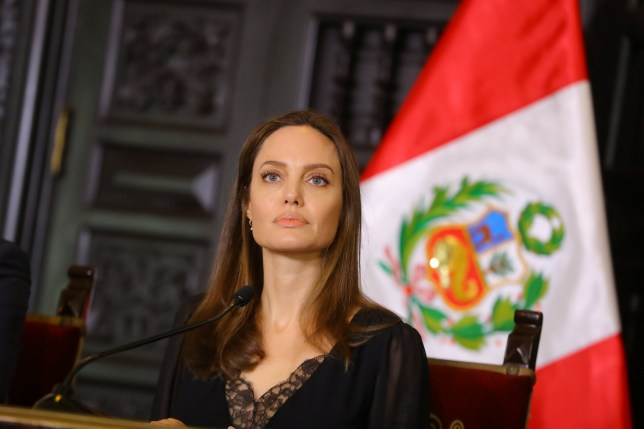 U.N. Refugee Agency???s special envoy Angelina Jolie attends a news conference at the government palace in Lima, Peru October 23, 2018. Courtesy of Peruvian Government Palace/Andres Valle/Handout via REUTERS ATTENTION EDITORS - THIS IMAGE WAS PROVIDED BY A THIRD PARTY.