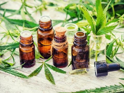 What do drug dealers think of today's legalisation of CBD medicine?