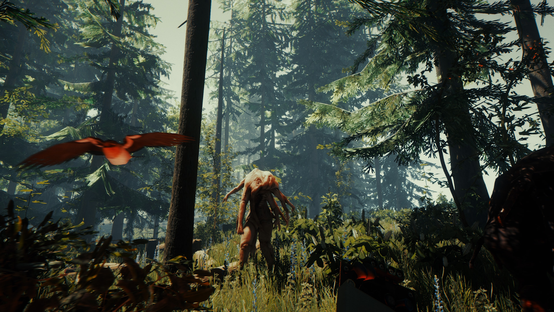 The Forest (PS4) - real survival horror