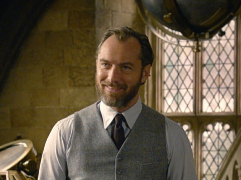 Jude Law thinks 'the world is ready' for an openly gay Albus Dumbledore