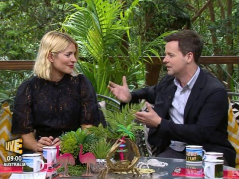 Dec 'got Ant's approval' to joke about his absence before Holly Willoughby replaced him on I'm A Celeb