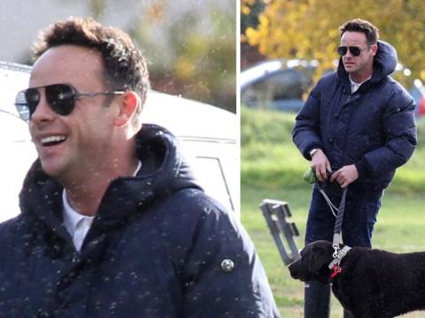 Ant McPartlin full of joy while walking pet dog Hurley amid Lisa Armstrong custody battle