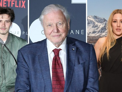 Ellie Goulding and Brooklyn Beckham join Sir David Attenborough at Netflix and WWF Our Planet conference