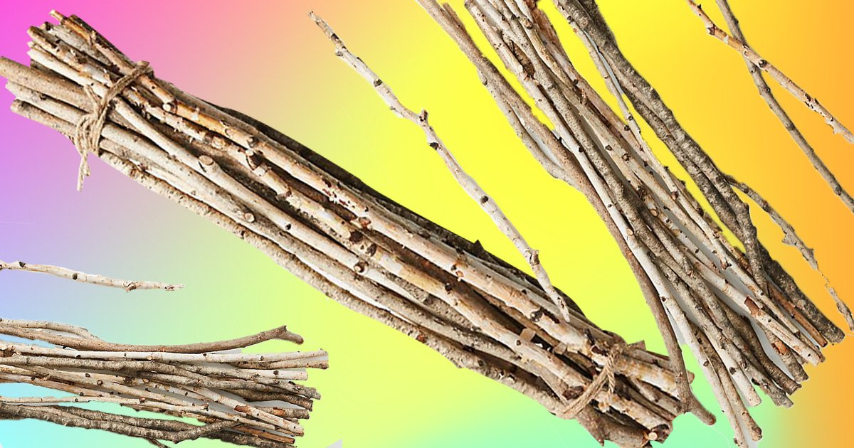 Anthropologie is selling twigs for £40