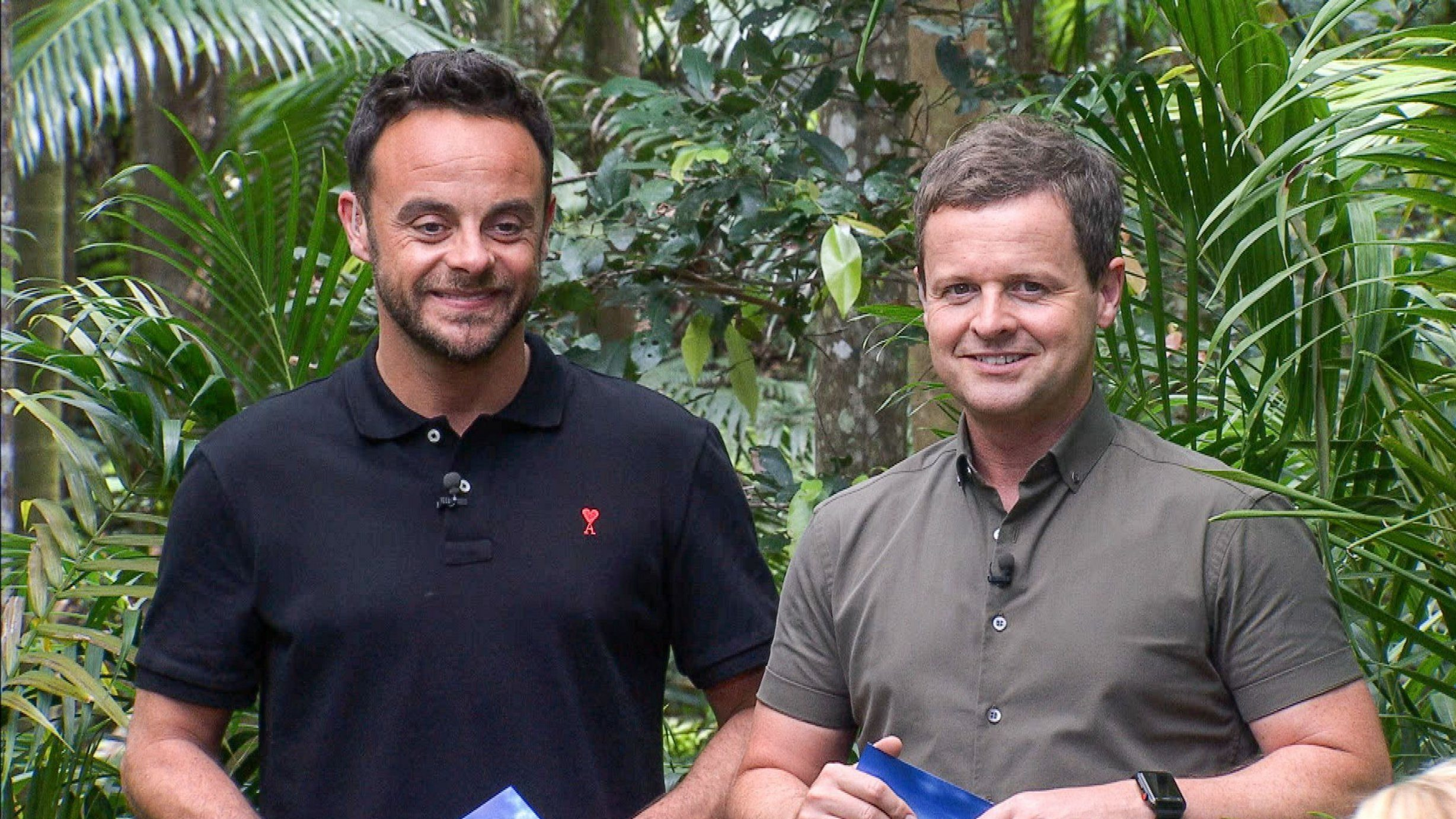 Declan Donnelly says Ant McPartlin 'will be back stronger next year' as he prepares for I'm A Celeb