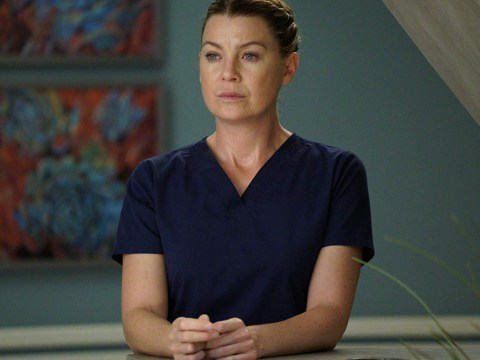 Grey's Anatomy season 15 is getting even bigger and we are living for it