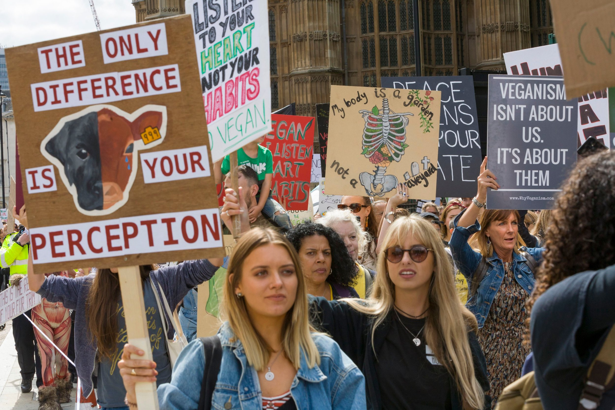 Mandatory Credit: Photo by Steve Parkins/REX/Shutterstock (9807858p) The Official Animal Rights March London 2018, sees thousands of vegans take over the streets of London, demanding an end to all animal oppression. Animal rights demonstration, London, UK - 25 Aug 2018