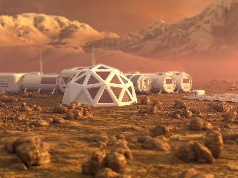 People born today will witness the first off-planet permanent colony