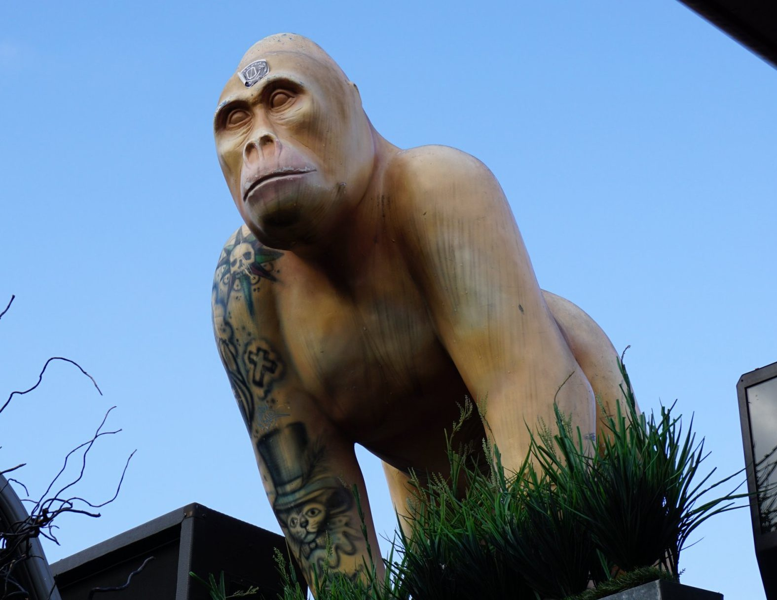 Stolen gorilla statue Ace.Last seen 8 November on the roof terrace of The Karma Sanctum Soho Hotel in London.