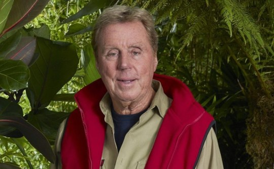 This image is strictly embargoed until 22.30 Monday 12th November 2018 From ITV Studios I'm A Celebrity... Get Me Out Of Here!: SR18 on ITV Pictured: Harry Redknapp. This photograph is (C) ITV Plc and can only be reproduced for editorial purposes directly in connection with the programme or event mentioned above, or ITV plc. Once made available by ITV plc Picture Desk, this photograph can be reproduced once only up until the transmission [TX] date and no reproduction fee will be charged. Any subsequent usage may incur a fee. This photograph must not be manipulated [excluding basic cropping] in a manner which alters the visual appearance of the person photographed deemed detrimental or inappropriate by ITV plc Picture Desk. This photograph must not be syndicated to any other company, publication or website, or permanently archived, without the express written permission of ITV Picture Desk. Full Terms and conditions are available on the website www.itv.com/presscentre/itvpictures/terms For further information please contact: james.hilder@itv.com / 0207 157 3052
