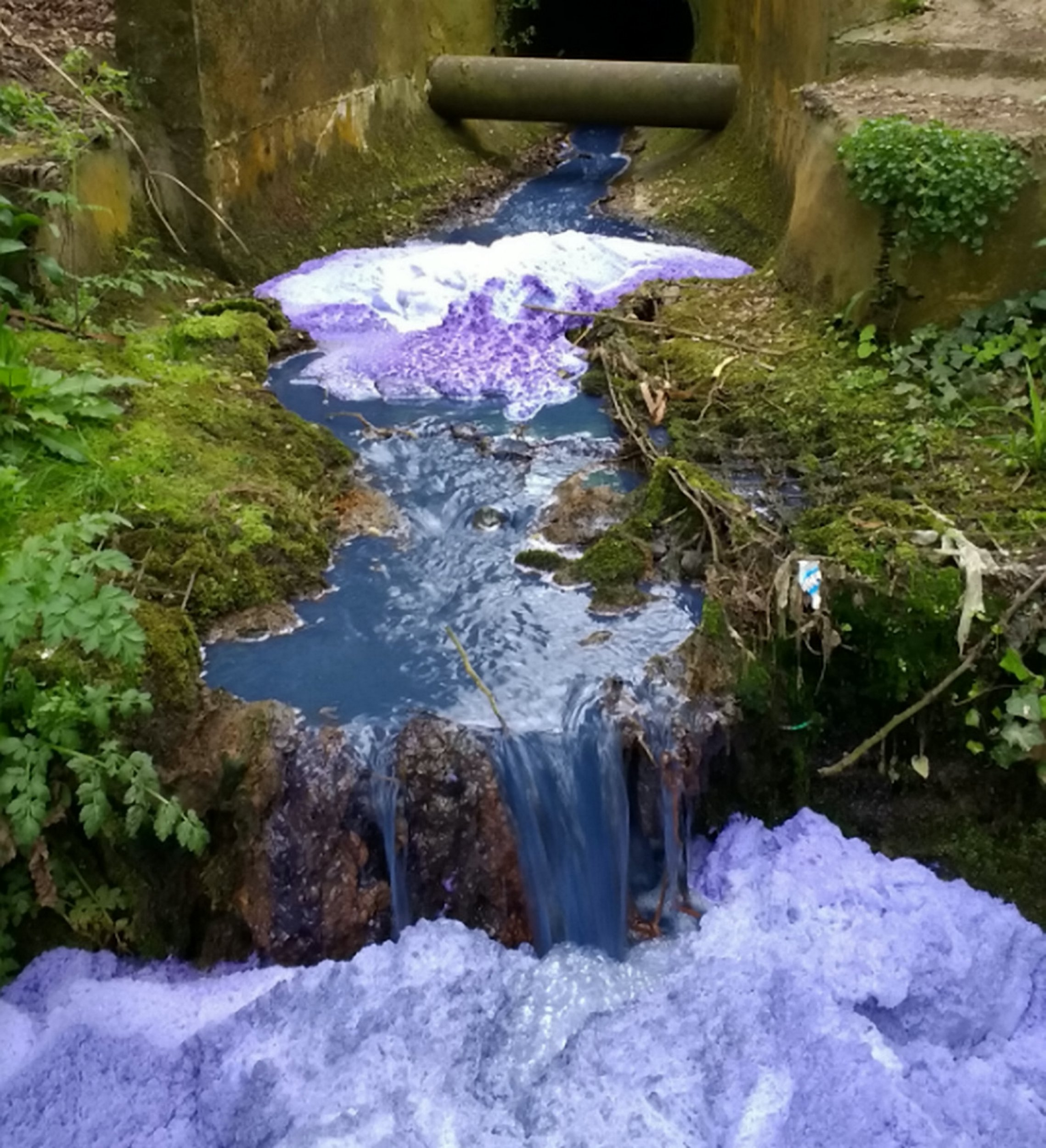 The River Yeo turned a vibrant purple in April last year. See Story SWBRpurple; A Yeovil company has been ordered to pay more than ?13,000 in fines and costs for polluting a river with waste ink. The River Yeo turned a vibrant purple after Ablebox Ltd dumped up to 50 buckets of waste ink down a drain. Concerned members of the public got in touch with the Environment Agency to report discolouration up to 4km downstream of the industrial estate on the eastern edge of Yeovil.