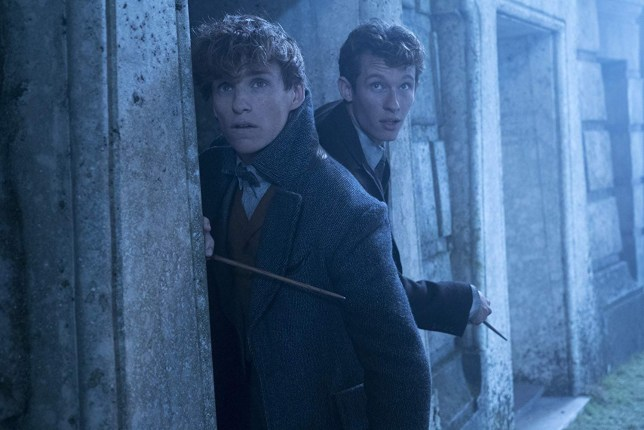 Picture: Warner Bros Cute Harry Potter throwback in Fantastic Beasts easter egg