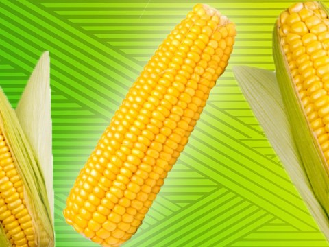 Have we all been eating corn on the cob the wrong way?