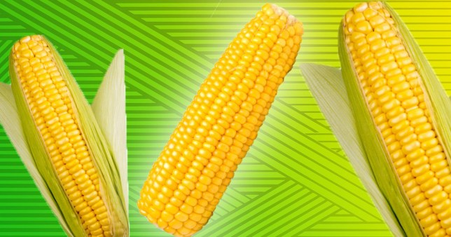 We've all been eating corn on the cob wrong