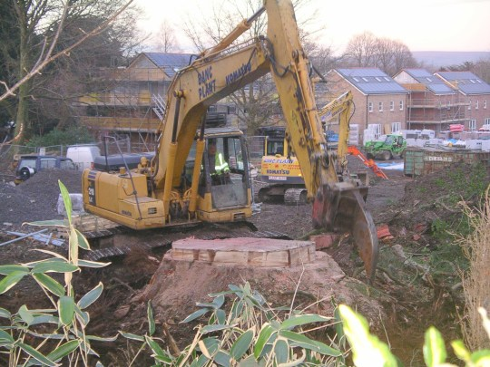 A towering giant redwood has been chopped down at a new housing estate in Swansea, 'by mistake'. The tree may have been up to 200 years old and was probably planted by the land-owning family who created what is now Penllergare Valley Woods. Eighty new homes are being built at the site of the former Valley Woods mansion house, which was demolished in the 1960s before Lliw Valley Council moved to new offices there. Enzo Sauro, the boss of developer Enzo?s Homes, said the giant redwood had been cut down by mistake. The tree at Penllergaer which has been cut down at a housing development site