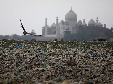 Taj Mahal is under threat from neglect and pollution